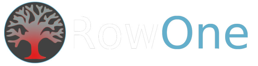 RowOne IT Services